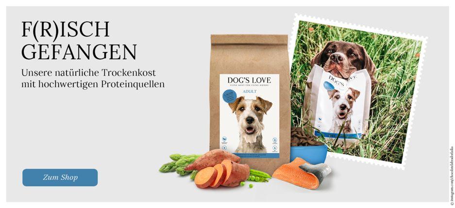 https://www.dogslove.com/shop?style_multi=36