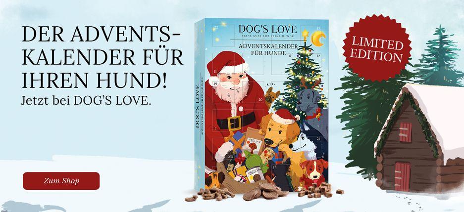 https://www.dogslove.com/shop/adventskalender-2019